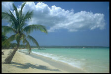 328001 Seven Mile Beach Negril A4 Photo Print