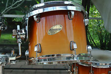 "LUDWIG 12"" ACCENT CS CUSTOM TOBACCO FADE RACK TOM for YOUR DRUM SET! LOT #V210"
