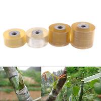 100M Garden Nursery Grafting Tape Self-adhesive PVC Degradable membrane In YK