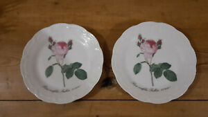 2 Kuchenteller Hutschenreuther Viktoria mit Rose ca.19cm selten