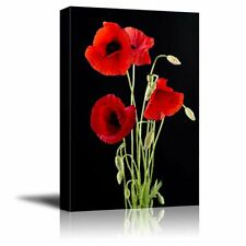 "Canvas Prints - Red Poppy Flowers Against Black Background|Wall Decor- 32"" x 48"""