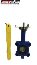 """2"""" Lug Butterfly Valve Ductile Iron Body 316 SS Disc"""