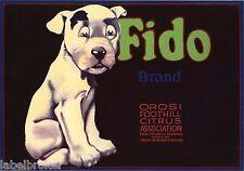 FIDO CRATE LABEL ORIGINAL VINTAGE PIT BULL BONZO DOG ADVERTISING 1930S ORIGINAL