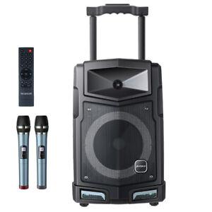 Mobile PA Karaoke Anlage Radio Lautsprecher 500 W Akku Bluetooth USB Box Mikro