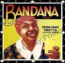 Black Americana Vintage Label Magnet -  Bandana Fruit Co. -  Florida