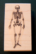 "P19 Skeleton 3x1"" rubber stamp WM"