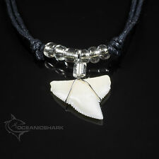CLEAR SEE THROUGH SHIMMERING GLASS BREAD REAL SHARK TOOTH NECKLACE CORD NL  C4