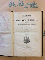Elementi Di Storia Naturale Generale Ad Uso Scuole Di Filosofia Zoologia 1879