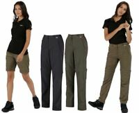 Regatta Womens/Ladies Chaska Convertible Zip off Trousers Regular Leg Length
