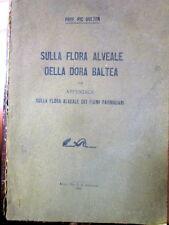 Bolzon - Sulla flora alveale della Dora Baltea con appendice su fiumi parmigiani