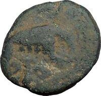 SEVERUS ALEXANDER 222AD Romulus Remus She-Wolf Ancient Roman Coin RARE i50249