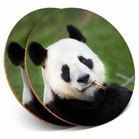 Beautiful Lesser Red Panda Home Gift #14217 2 x Coasters