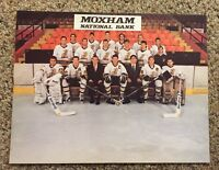 Rare Johnstown Chiefs ECHL Minor League 1988/89 Team 8x10 Photo Slapshot DEFUNCT