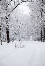 White snow Winter Photography Backgrounds Backdrops Studio  Vinyl 5x7ft Branches