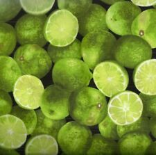 Limes green fruit food Timeless Treasures fabric
