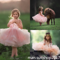 Pink Tulle Applique Sleeveless Bridal Quinceanera Flower Girl Dress Ball Gown