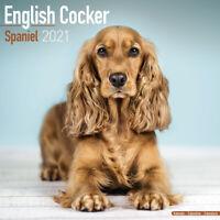ENGLISH COCKER SPANIEL CALENDAR 2021 SQUARE WALL NEW   + FREE UK POSTAGE