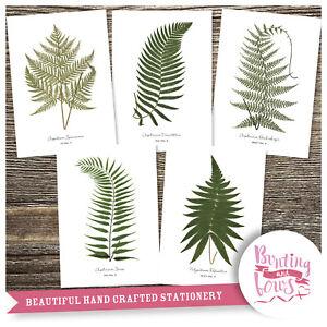 Fern Botanical Leaf Prints Print A4 Vintage Reproduction Art - set of 5 - No3