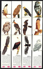 CIGARETTE/TRADE/CARDS.Lipton (Tea) Ltd(O/Seas).BIRDS OF PREY.(1970).(Set).(RARE)
