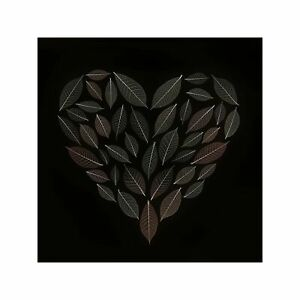Heart Drawn with Brown Leaves on Dark Background Art Wall Decor Print 2 60x60cm