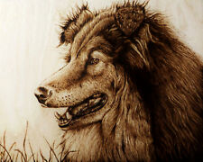 """PICTURE PERFECT SMILE"" ORIGINAL DOG/COLLIE PYROGRAPHY/WOODBURNING DRAWING"