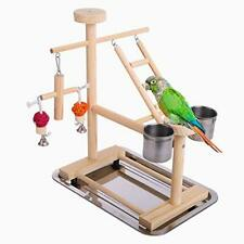 Parrot Playstand Perch Bird Play Stand Small Birds Play Gym Cockatiel