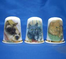 Birchcroft China Thimbles -- Set of Three -- Mixed Cats and Kittens