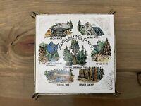 Vtg National Park Souvenir Sequoia Kings Canyon Trivet Tile Victoria Ceramic