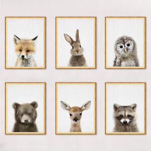 Lovely Animals Pictures Print Art Poster Kids Room Wall Decor Fox Deer Rabbit