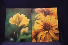 Vintage MEAD Lot Of (2) Yellow Flower Portfolio School Folder School 3-Ring