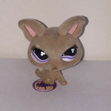 Littlest PetShop CHIHUAHUA FLOCKED 461 j29 CHIEN DOG Pet Shop