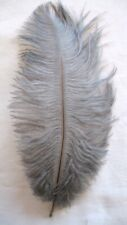 Gray Ostrich Feather #2 Grade 16-20 inch Long per Each
