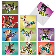 M2369TYB Dog Big Thanks: 10 Assorted Blank Thank You Note Cards /Envelopes.