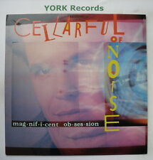 CELLARFUL OF NOISE - Magnificent Obsession - Ex Con LP Record CBS BFZ 40341