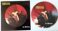 "EX/EX! NIRVANA IN BLOOM 12"" VINYL PICTURE PIC DISC"