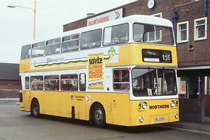 NORTHERN / TYNE AND WEAR TRANSPORT YNL230V 6x4 Quality Bus Photo