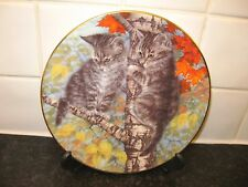CAT   PLATE  -  WHOSE IDEA WAS THIS      -  BRADFORD EXCHANGE
