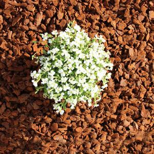 Premium Pinie 120 Liter mittel, 8-15 mm, Pinienrinde, Rindenmulch, Pinienmulch