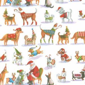 Caspari 8' Continuous Gift Wrap Roll, Waiting for Santa (9697RC)