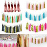 Tissue Tassels Paper Garland Bunting Wedding Birthday Party Hanging Banner Decor