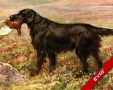 FLAT BLACK COATED RETREIVER BIRD HUNTING DOG ART PAINTING PRINT ON REAL CANVAS