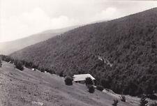 PRETORO - Bosco Sella di Fondi con la Mayelletta