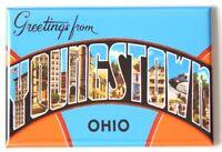 Greetings from Lakeside Ohio FRIDGE MAGNET travel souvenir lake erie