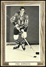 1964-1967 BEEHIVE GROUP 3 PHIL ESPOSITO VG-EX CHICAGO BLACK HAWKS HOCKEY PHOTO