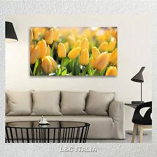 Tulipani gialli 2 QUADRO INTELAIATO 90x45 STAMPA TELA ARREDO QUADRI FIORI FLOWER