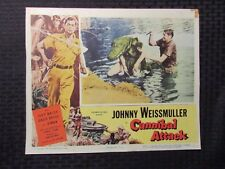 "1954 CANIBAL ATTACK 14x11"" Lobby Card VG- 3.5 Johnny Weissmuller"