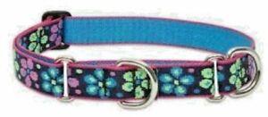 "Lupine Lifetime COMBINATION Martingale Dog Collar 1"" - FLOWER POWER"