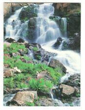 JOHN FIELDER MOUNTAIN GALLERY Leanin' Tree Thank You Greeting Card Envelope MG1