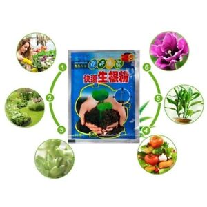 2021 5X cutting plant fast rooting powder Hormone growing root seedling germinat