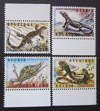 Schildkröten Reptilien  10 Marken + 1 Block   6 Bilder